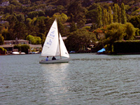 Belvedere Sailing Society